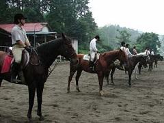 日の出乗馬倶楽部
